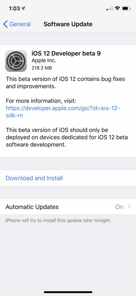 ios 12 beta developer profile